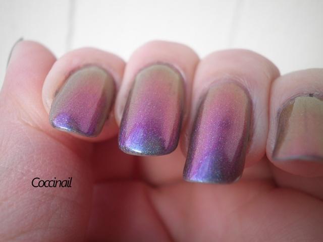Magical mistery tour - Enchanted polish