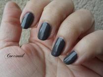 Kiko Quick dry n°818 Smoke Gray