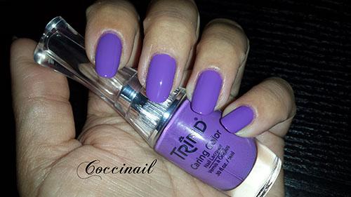 Trind color violet