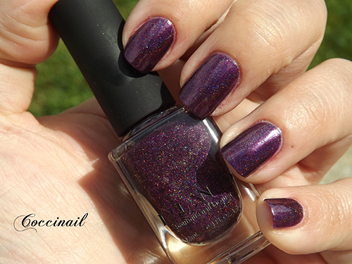Poetry - ILNP